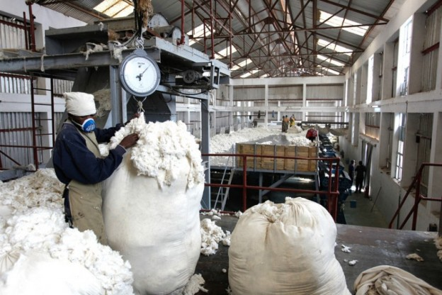 information about cotton industry