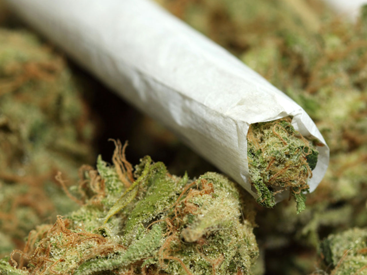 Jail Me In Jamaica Pleads Weed Smoker Zambia Daily Mail