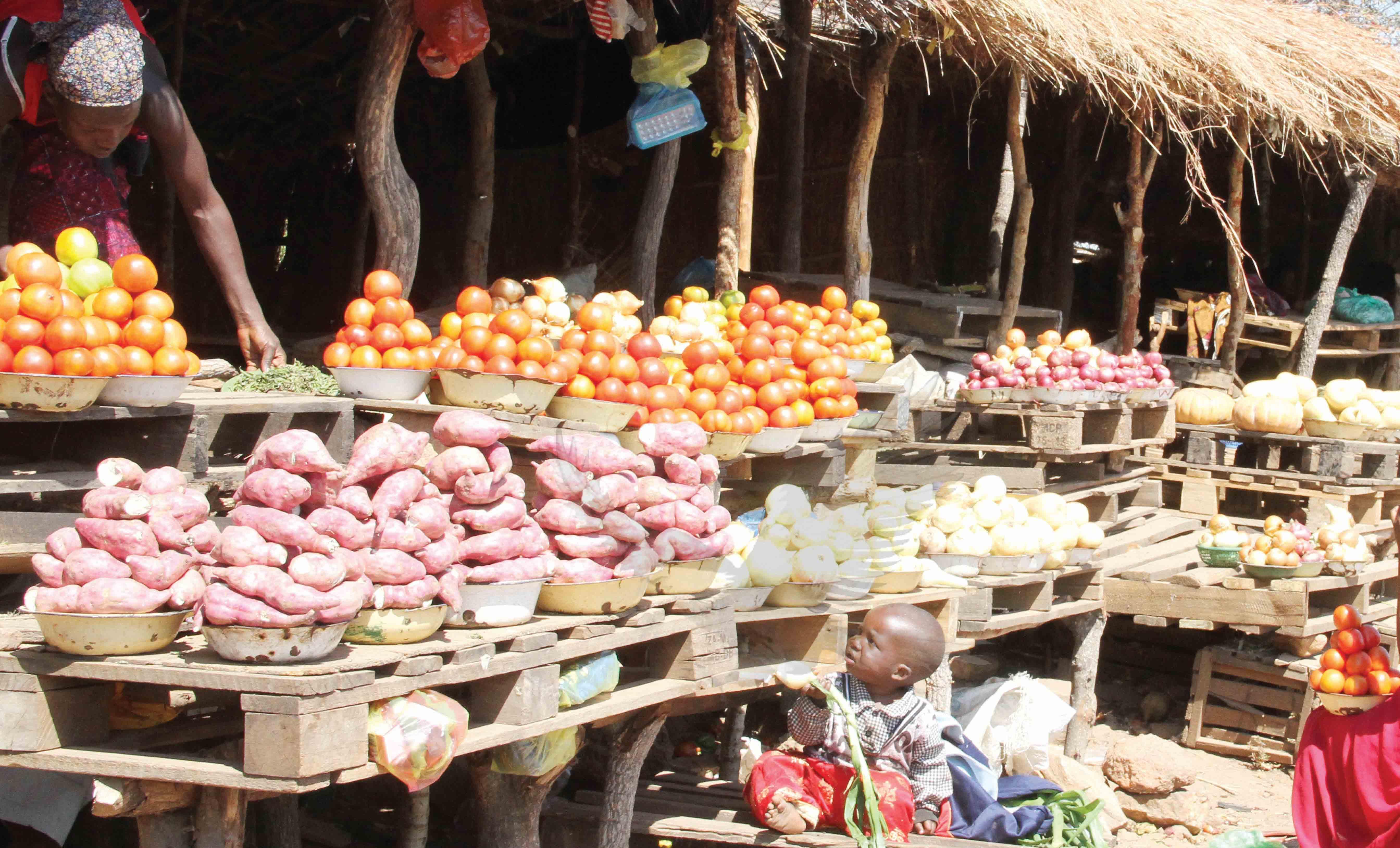 Hivos – Zambia Daily Mail