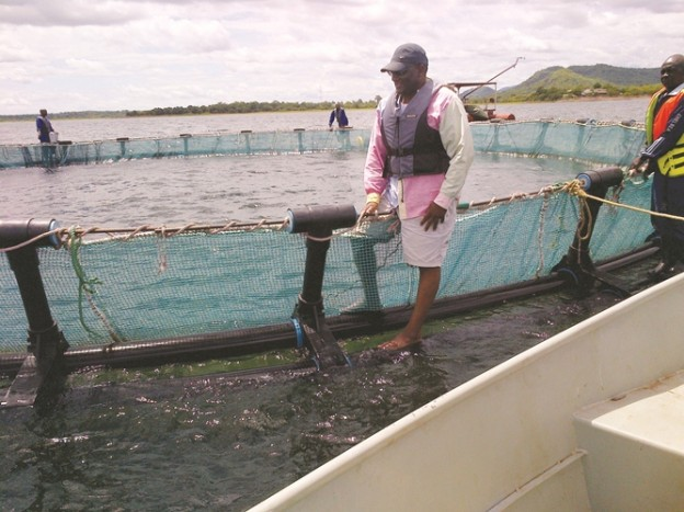 YALELO FISHERIES