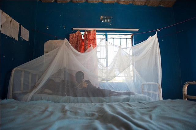 Health officials act to control malaria in Muchinga