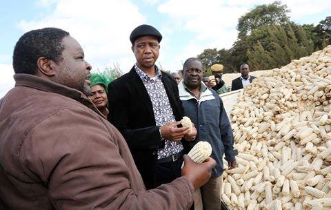 Daka, master seed dealer finds market niche