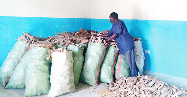From copper to cassava processing – Zambia Daily Mail