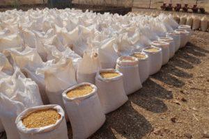 Maize bran – Zambia Daily Mail